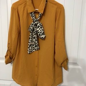 Blouse with Scarf